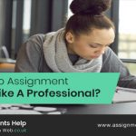 How To Do Assignment Writing Like A Professional?