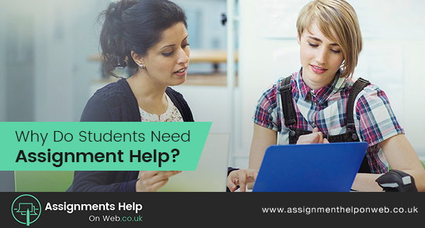 Why Do Students Need Assignment Help?
